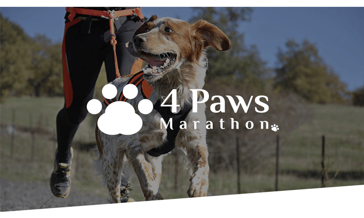 4 Paws Marathon Run Walk Christchurch