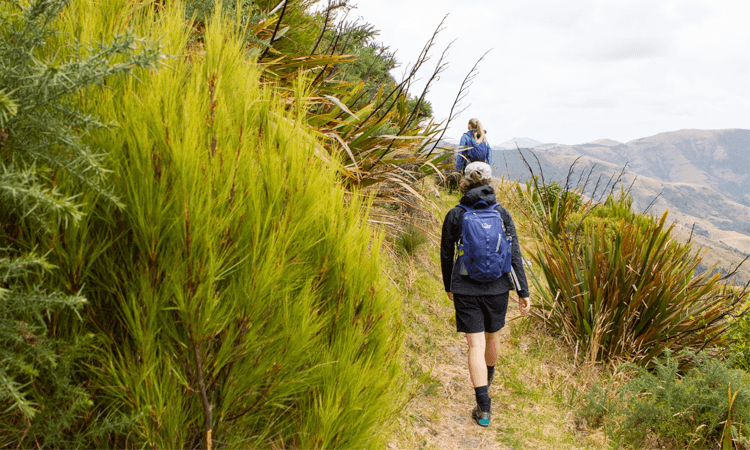 Banks Peninsula Adventure Race Canterbury 2019