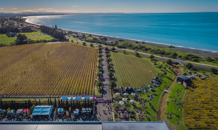 New Zealand Sotheby's International Realty Hawke's Bay Marathon Run aerial view