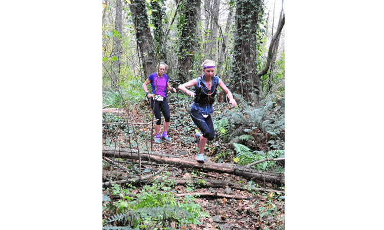 Old Forest Hanmer 100 Ultra Trail Run